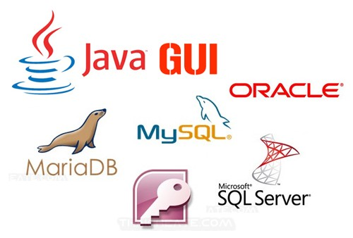 Java GUI Workshop and Database