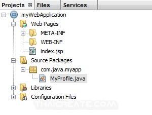 JSP and Netbeans  Create Call Class java