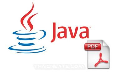 JSP and PDF