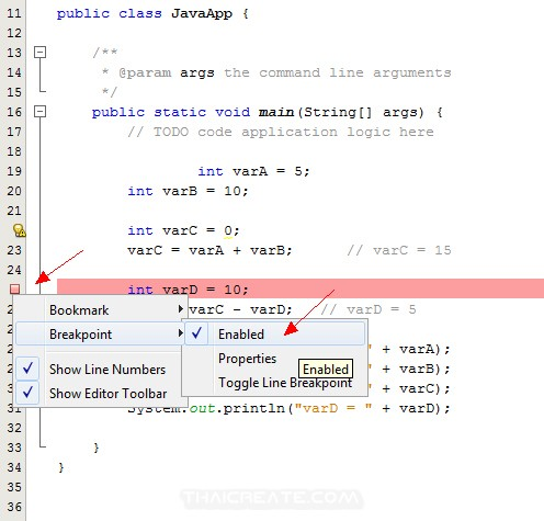 Run/Debug Netbeans Java