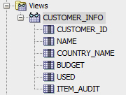 Oracle Database View