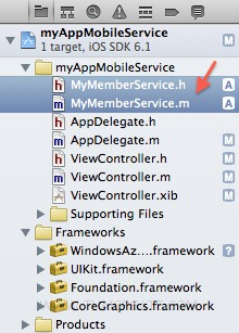 iOS/iPhone Mobile Services Create Table