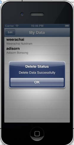 iOS iPhone Delete Data Mobile Services