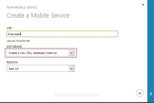 Azure Mobile Services Windows Store App